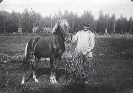 hjalmar ja hevonen
